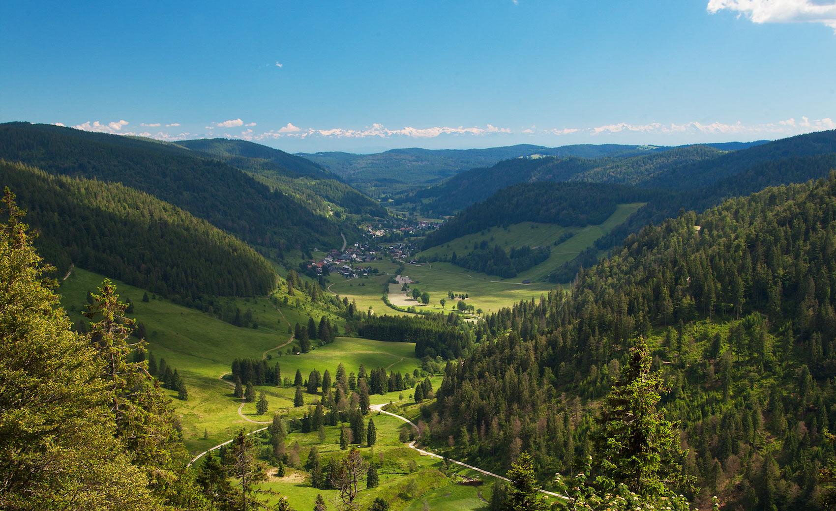 Umfrage zur Akzeptanz des Biosphärengebiets: 3000 Haushalte im Südschwarzwald werden angeschrieben