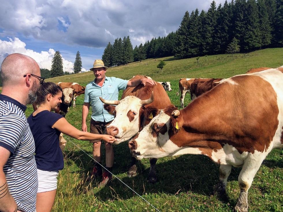 Der Schwarzwald schmeckt: Initiative Cowfunding