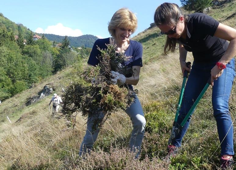 """Mitmachen erwünscht: Beteiligungsforen des Biosphärengebiets Schwarzwald treffen sich zur """"Gesamtsäule"""" am 25. Februar in Todtnau"""