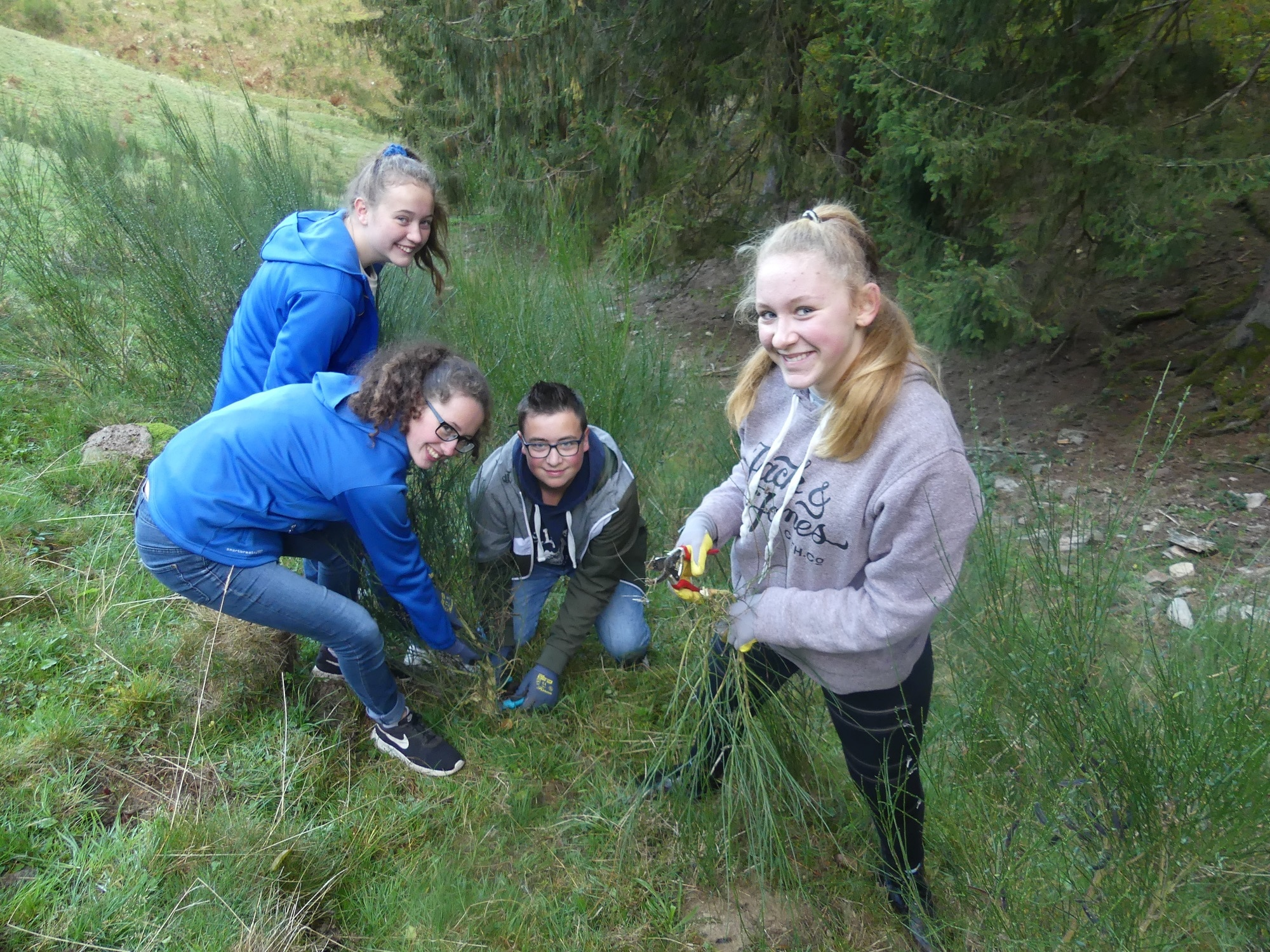 Dreisamtäler Schüler schaffen im Biosphärengebiet Schwarzwald