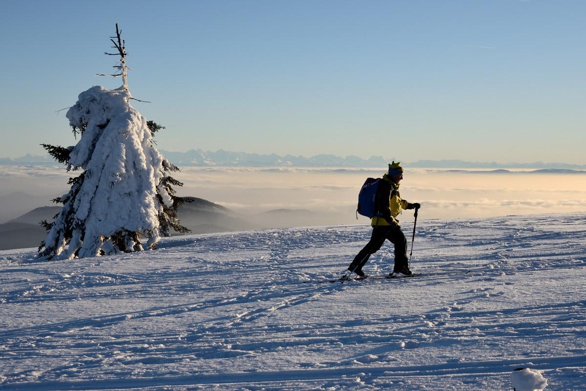 Schneeschuh-Wanderung zum Genießen – Erste Ranger-Tour im Biosphärengebiet Schwarzwald mit SC-Fans und anderen Interessierten