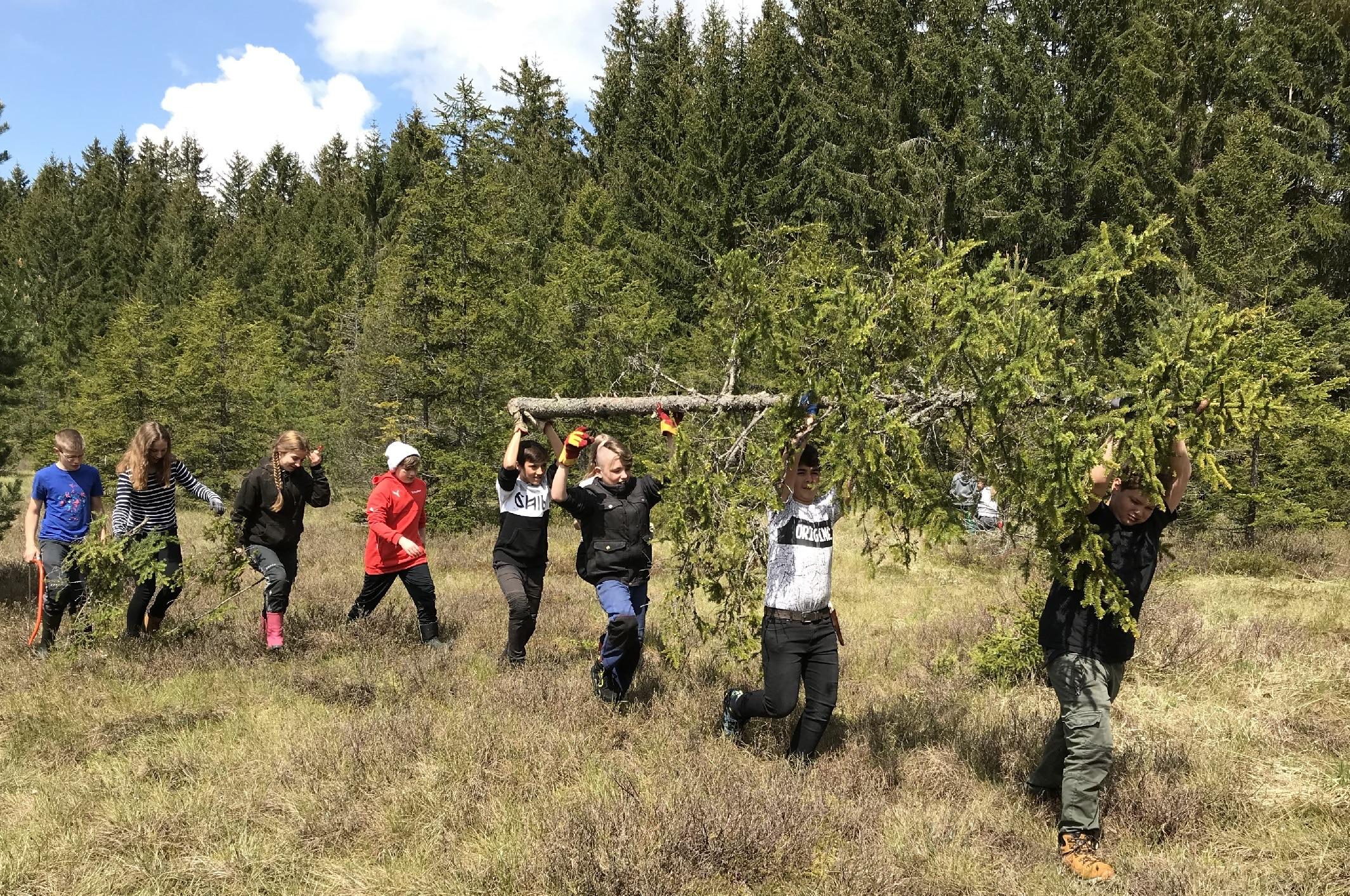 Natur ist Klasse: Natura 2000-Klassenzimmer geht in Regie des Biosphärengebiets Schwarzwald über