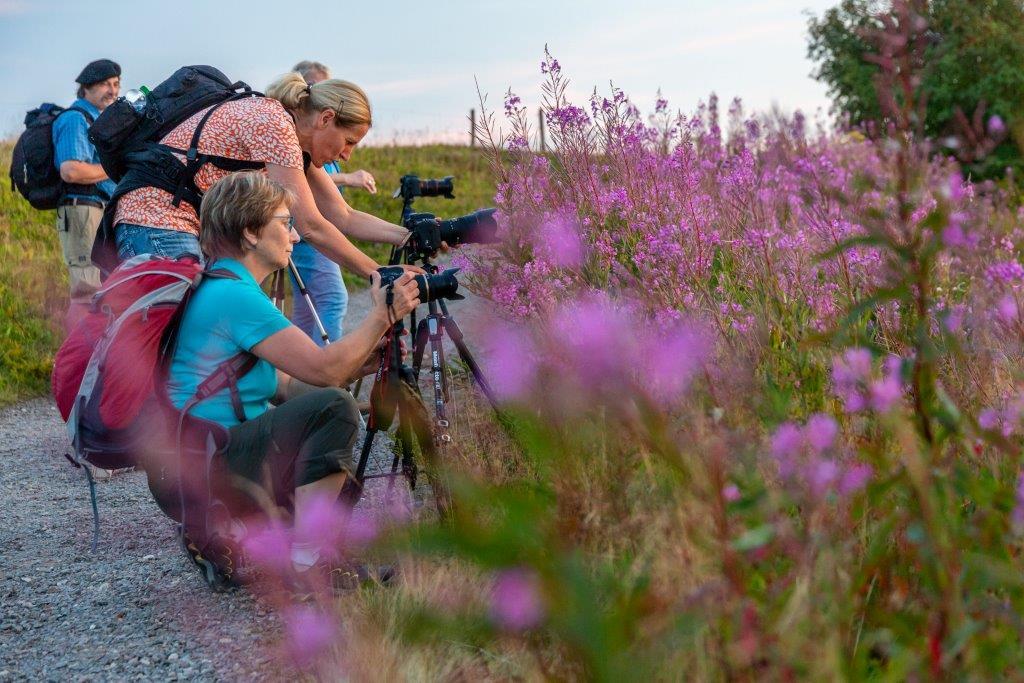 Abendlicher Fotospaziergang um den Belchen mit Sebastian Schröder-Esch am Samstag, 27. Juli