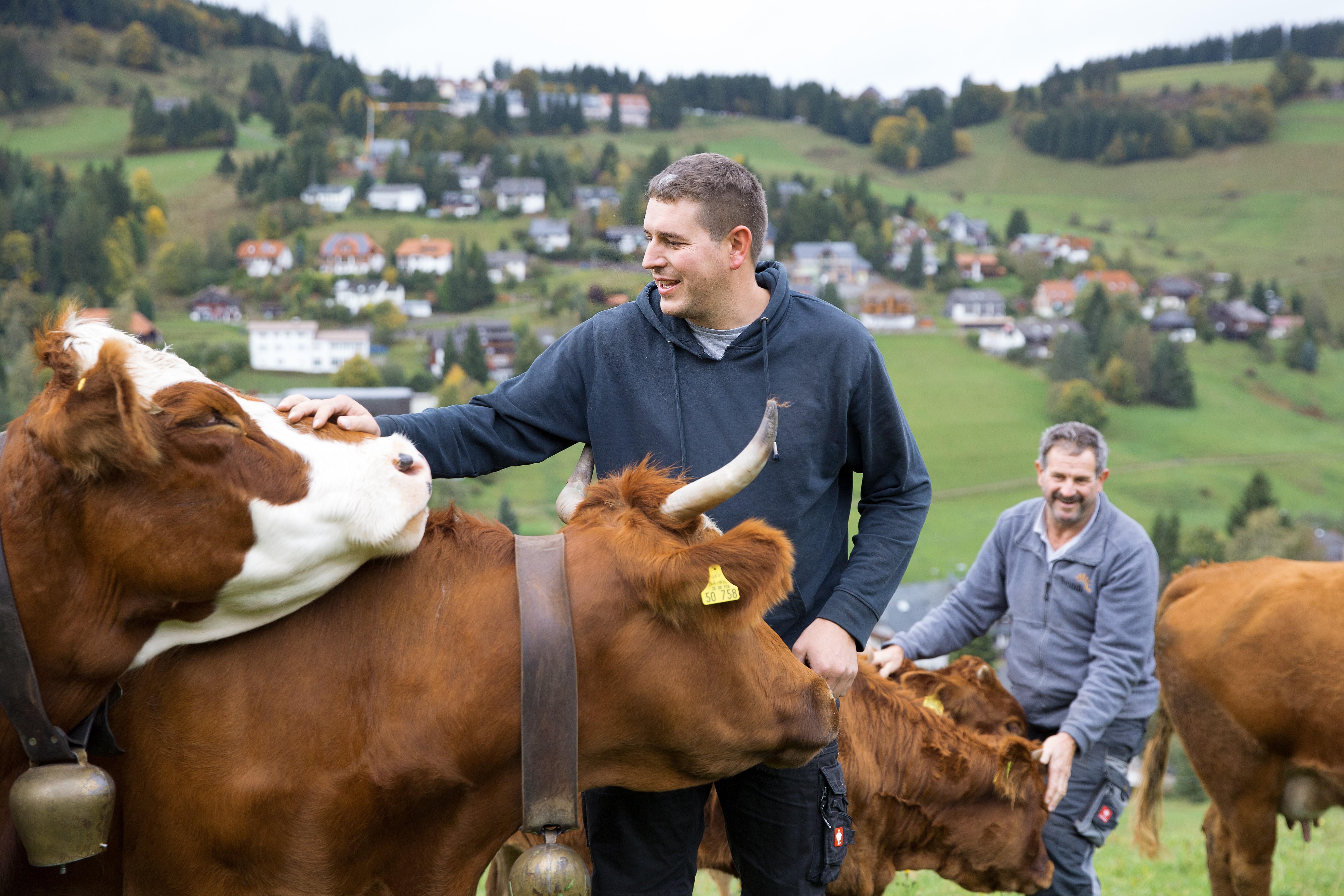 """""""Bauernschlau – Geschichten zur Hofübergabe"""""""