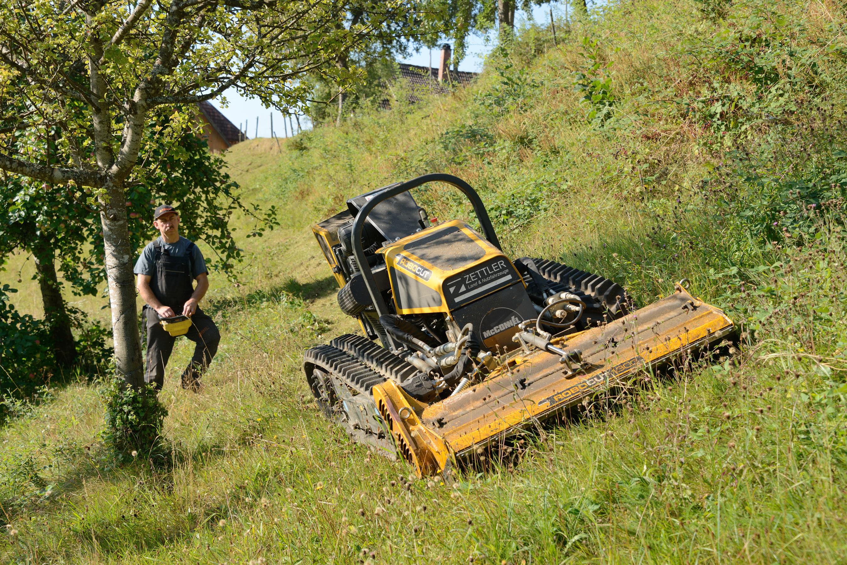 Lenkungskreis befürwortet zwölf neue Förderprojekte im Biosphärengebiet Schwarzwald