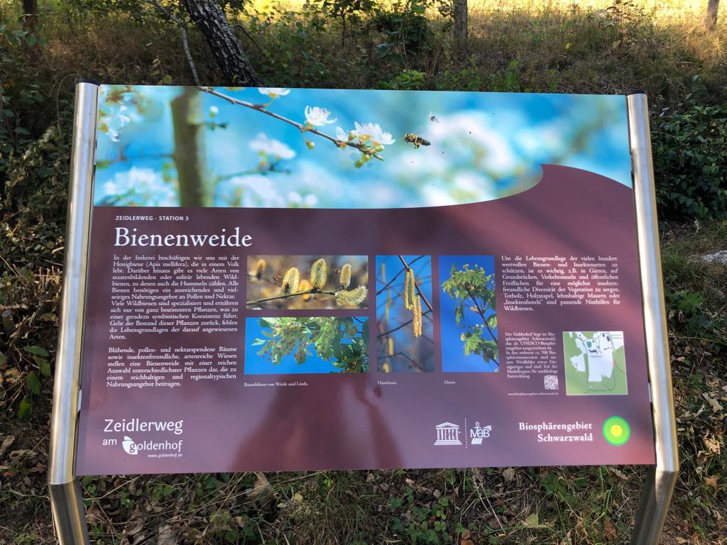 Zeidlerpfad informiert über die Imkerei in Dachsberg-Urberg (Kreis Waldshut)