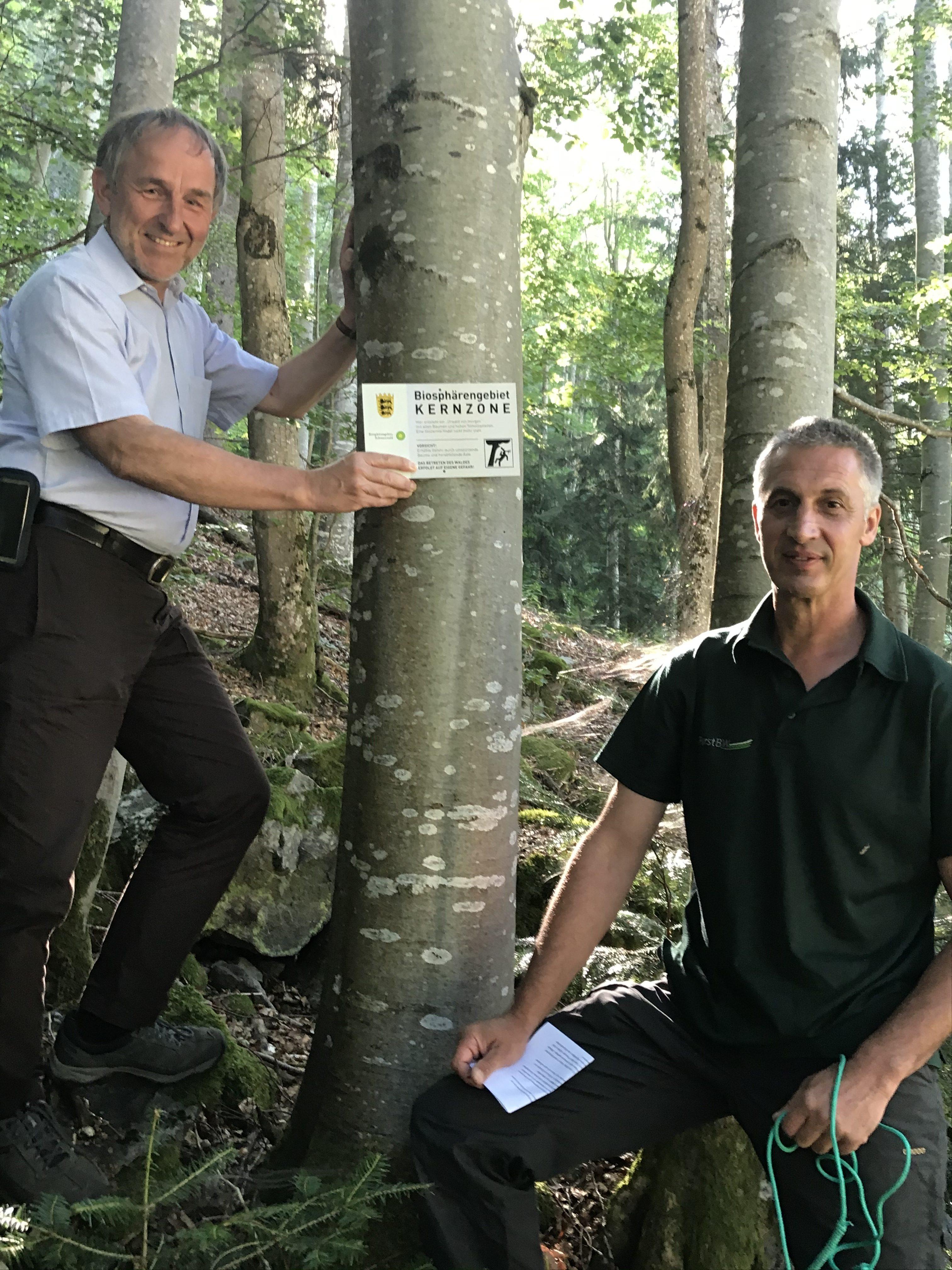 Kernzonen im Biosphärengebiet Schwarzwald: Erste Schilder hängen