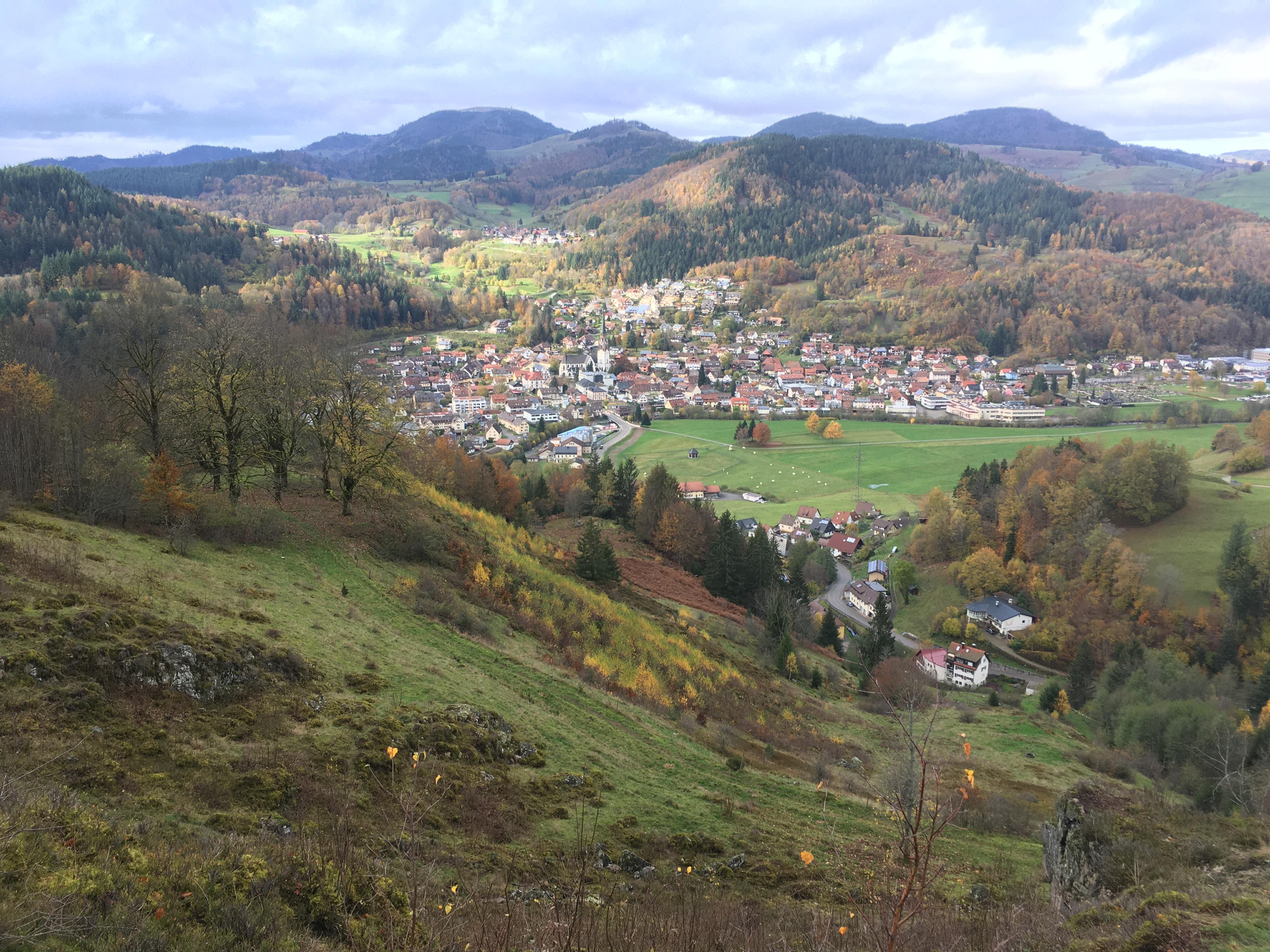 Lenkungskreis des Biosphärengebiets Schwarzwald informiert sich über Fortschritte im Großschutzgebiet