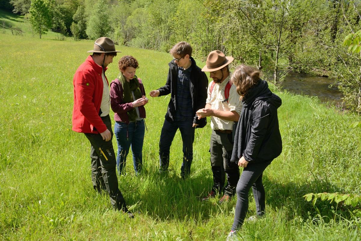 Rangertouren im Biosphärengebiet Schwarzwald fallen im Mai aus