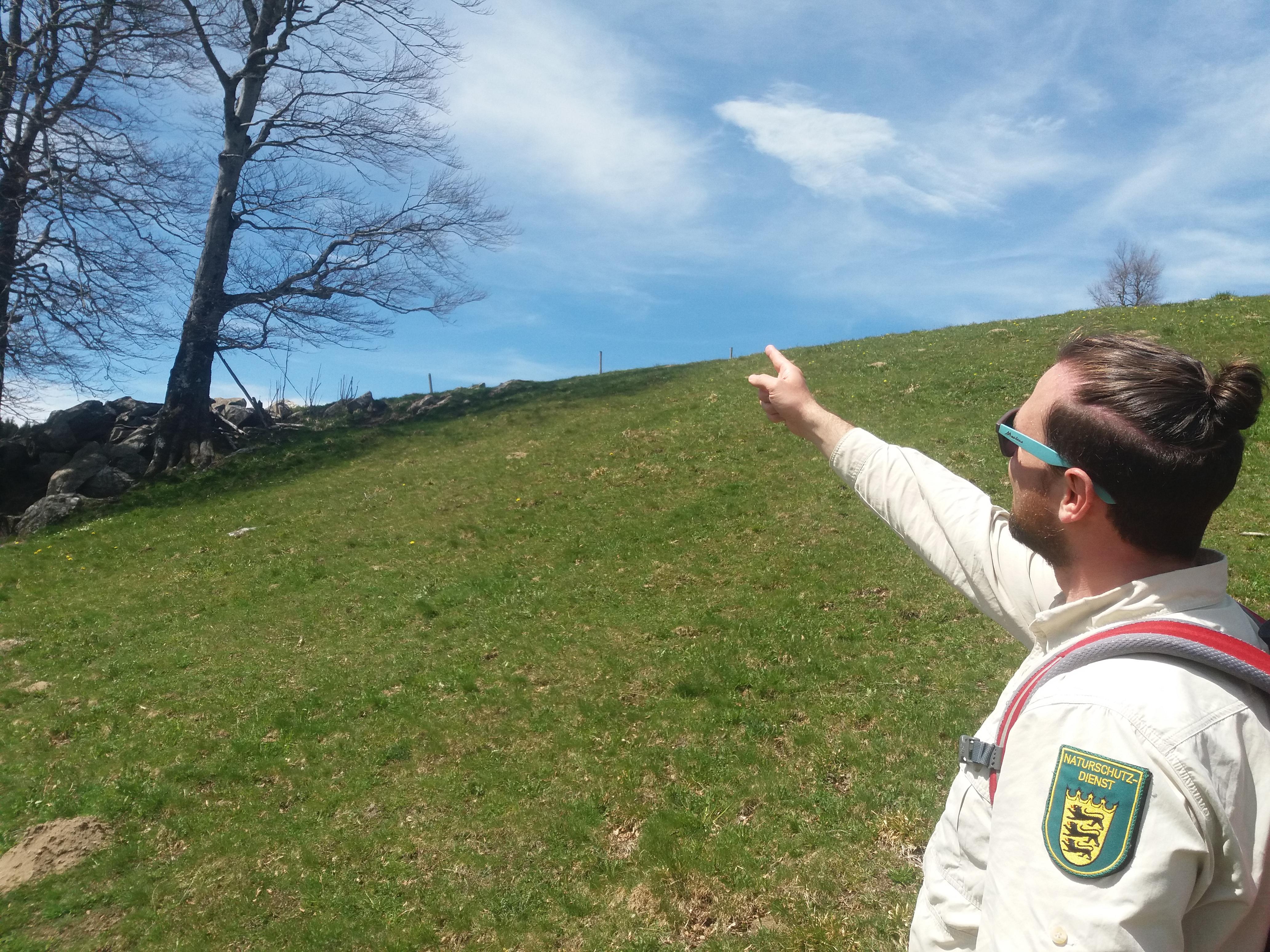 Rangertouren im Biosphärengebiet Schwarzwald 2021