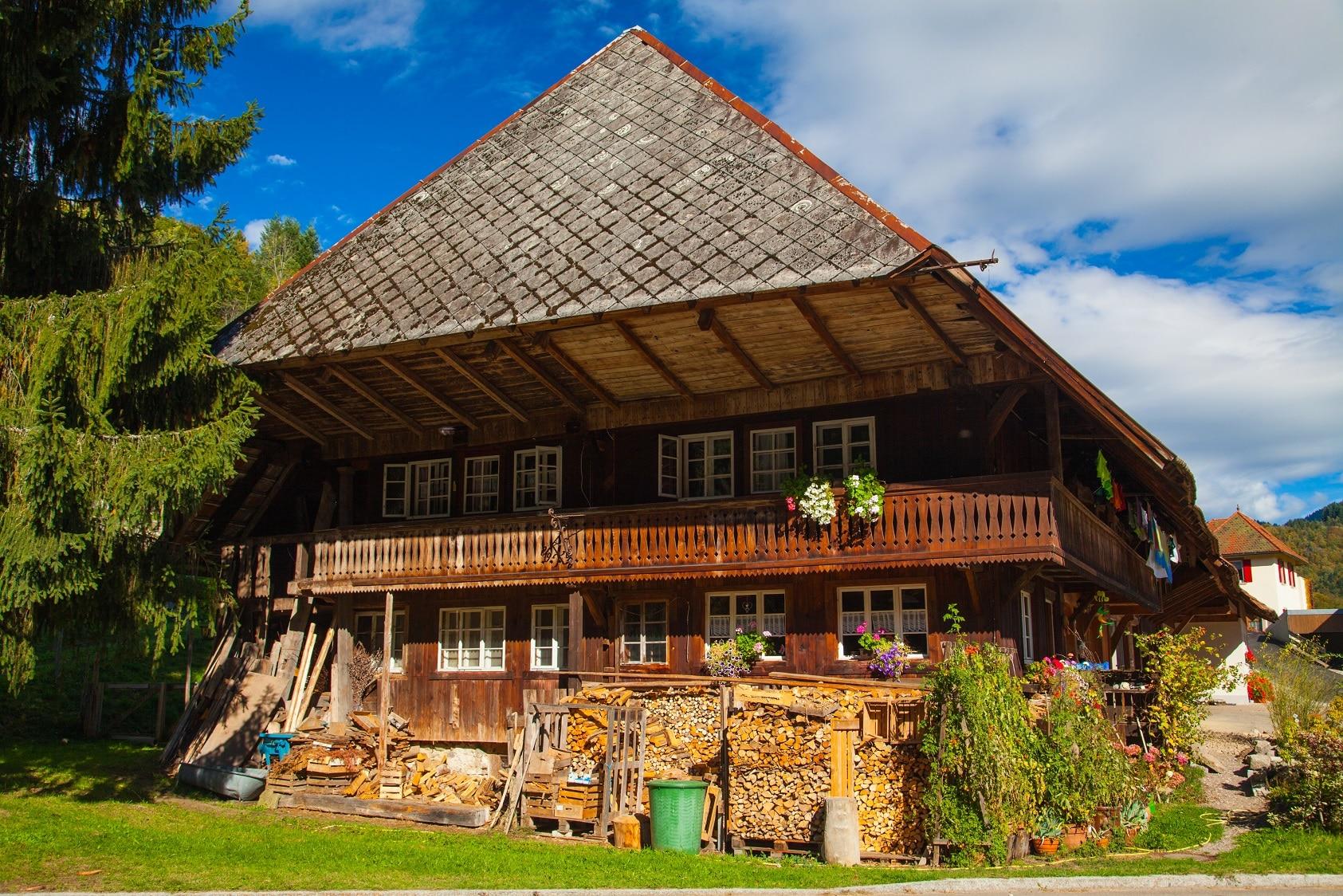 Erste Praxistage Holz im Biosphärengebiet Schwarzwald